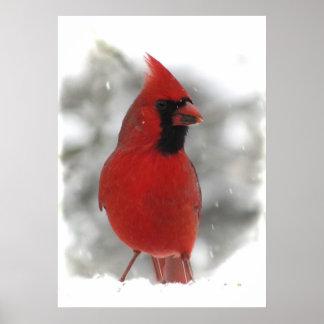 Cardinal Impresiones