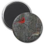 Cardinal Pair 2 Inch Round Magnet