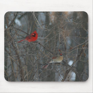 Cardinal Pair Mouse Pad