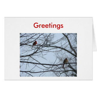 Cardinal Pair On Branches, Greetings Card