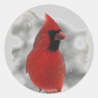 Cardinal Pegatina Redonda