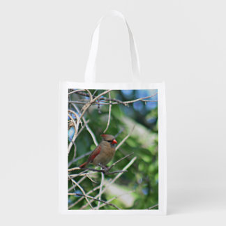 Cardinal photo grocery bag