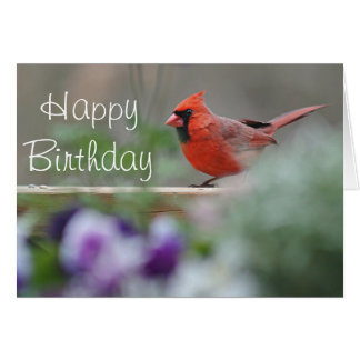 Cardinal photo Happy birthday Card