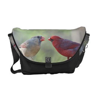 Cardinal photo messenger bag
