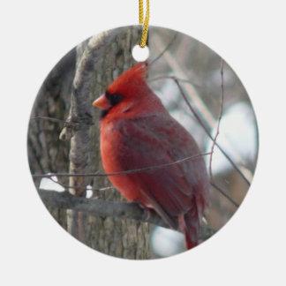 Cardinal photograph-song bird in winter Ornament