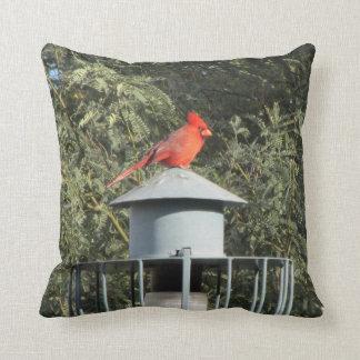 Cardinal Pillows