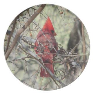 Cardinal Platos Para Fiestas