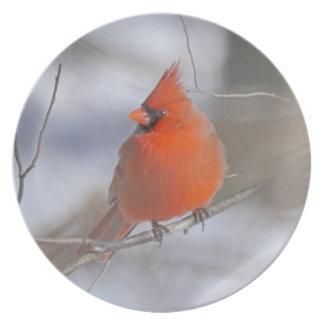 Cardinal Plato