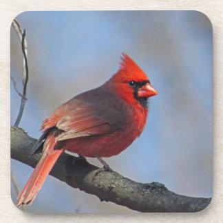 Cardinal Posavasos De Bebida