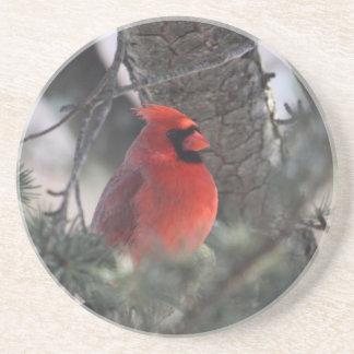 Cardinal Posavaso Para Bebida