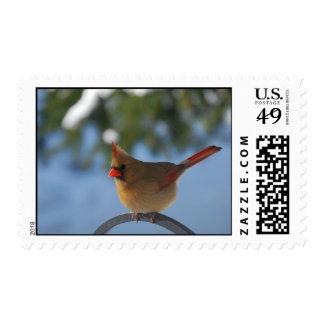 Cardinal Postage
