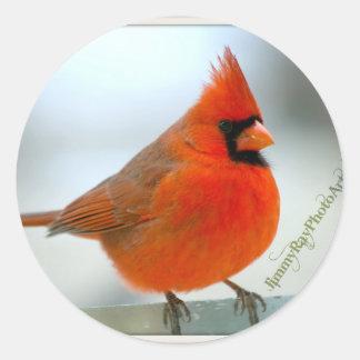 Cardinal Red Bird Classic Round Sticker