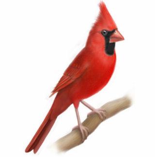 Cardinal Red Bird Ornament
