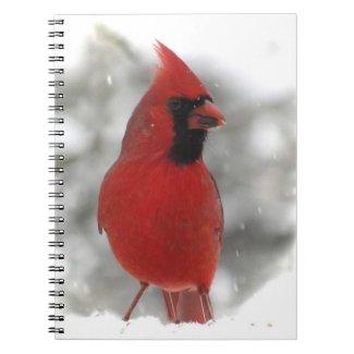 Cardinal Spiral Notebook