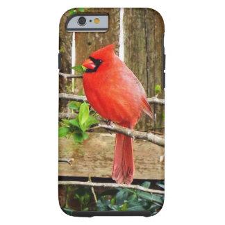 Cardinal spring  iPhone case Tough iPhone 6 Case