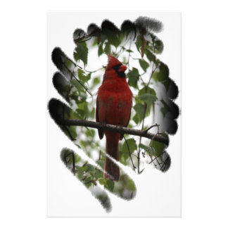 Cardinal Swerl Stationery