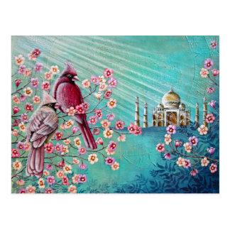 Cardinal Taj Mahal Postcard