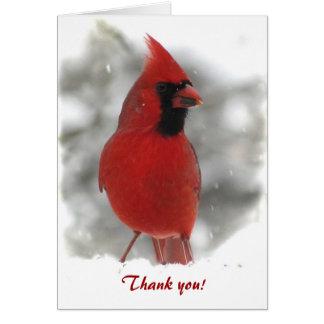 Cardinal Thank You Greeting Card