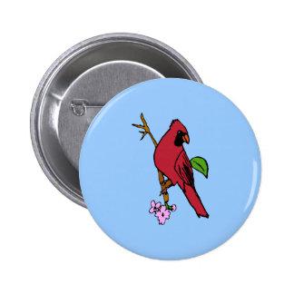 CardinalbyJennieK Pins