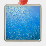 Cardinalfishes swimming underwater metal ornament