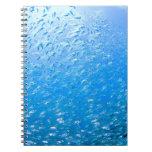 Cardinalfishes swimming underwater spiral notebook