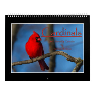 Cardinals 2017 Monthly Calendar By Thomas Minutolo