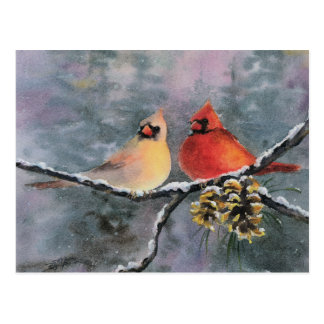 CARDINALS 2 by SHARON SHARPE Postcard