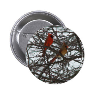 Cardinals Button