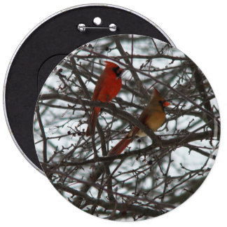 Cardinals Button Colossal, 6 Inch