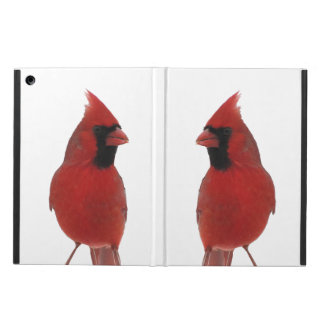 Cardinals Cover For iPad Air
