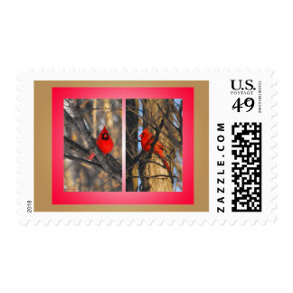 """Cardinals in a """"Crisp"""" Winter Morning Postage Stamp"""