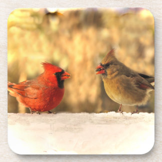 Cardinals in Autumn Coasters