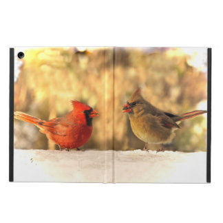 Cardinals in Autumn iPad Air Case