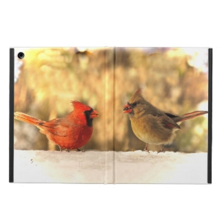 Cardinals in Autumn iPad Air Case
