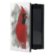 Cardinals iPad Mini Cover