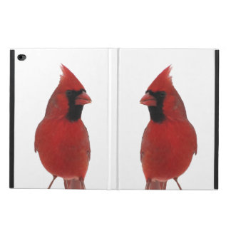 Cardinals Powis iPad Air 2 Case