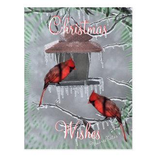 CardinalsIcyFeederPostcard-personalizar Postal