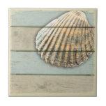 "Cardita Shell Ceramic Tile<br><div class=""desc"">Cardita shell on distressed wood background.</div>"
