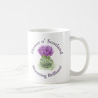 Cardo escocés brillante floreciente taza