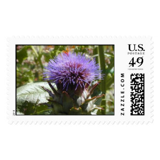 Cardo escocés con la abeja sello
