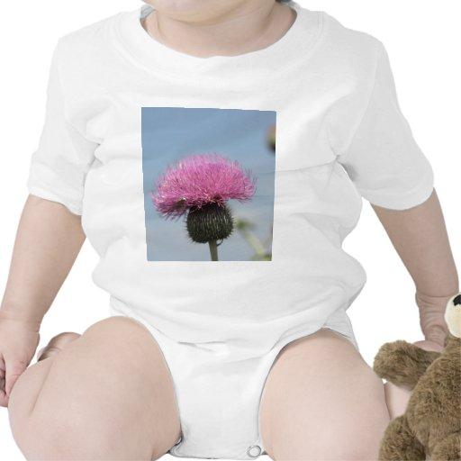 Cardo púrpura trajes de bebé