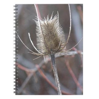 Cardo Spiral Notebooks