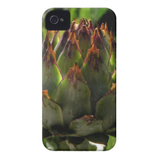Cardoon flower bud Case-Mate iPhone 4 case