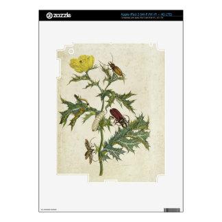 Cardos Spinosus: Beetles and Caterpillars, plate 6 iPad 3 Decal