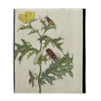 Cardos Spinosus: Beetles and Caterpillars, plate 6 iPad Folio Cases