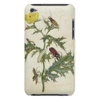 Cardos Spinosus: Beetles and Caterpillars, plate 6 iPod Case-Mate Case