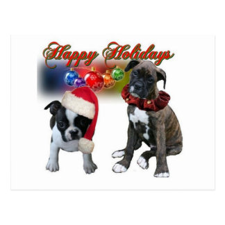 Cards:  Happy Holidays from BT and Boxer puppies Postcard