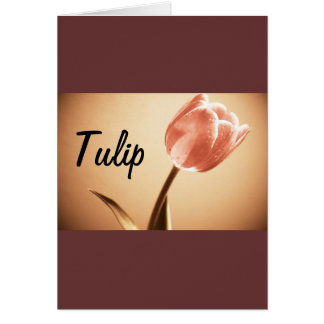 Cards, Tulip Photography Card