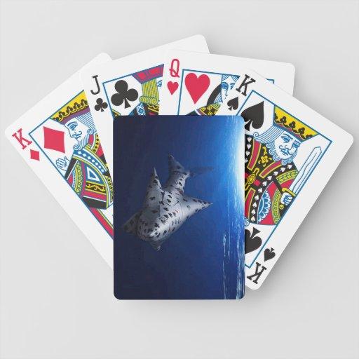 Cardshark Deck Bicycle Playing Cards