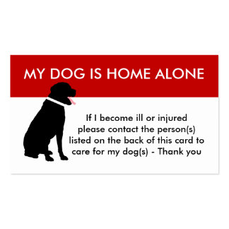 Care For My Dog Emergency Information Business Card